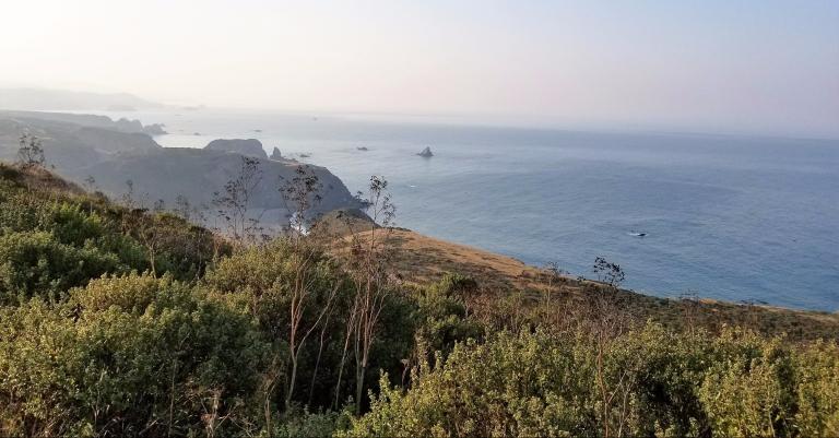 pygmy-trail-hazy-ocean.jpg