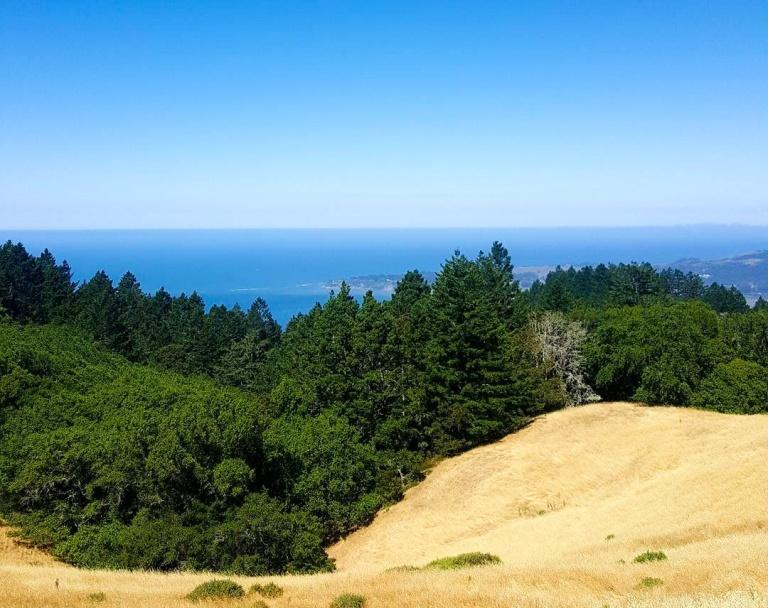 10-matt davis-wide-ocean-view