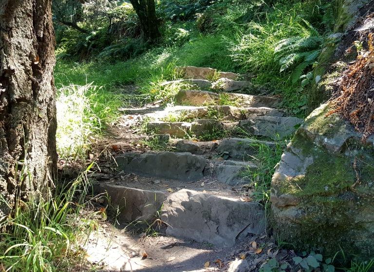11-matt davis-stone-steps