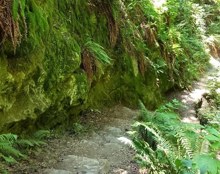 20-steep ravine