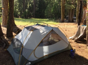 My tent. The meadow. The forest.