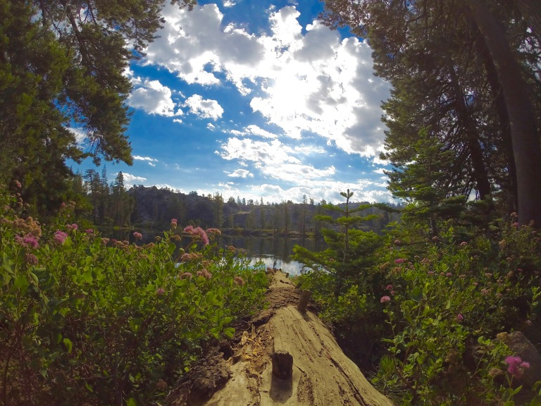 Middle Lake